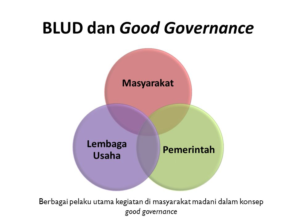 BLUD dan Good Governance