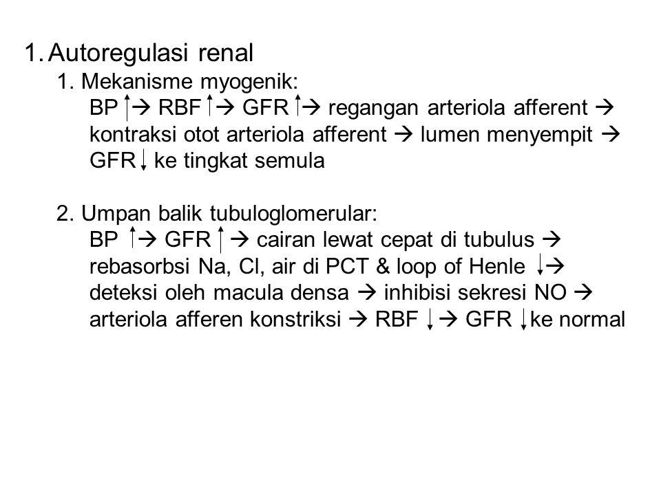 Autoregulasi renal Mekanisme myogenik: