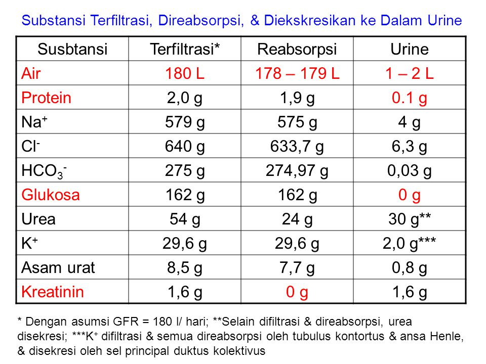 Susbtansi Terfiltrasi* Reabsorpsi Urine Air 180 L 178 – 179 L 1 – 2 L