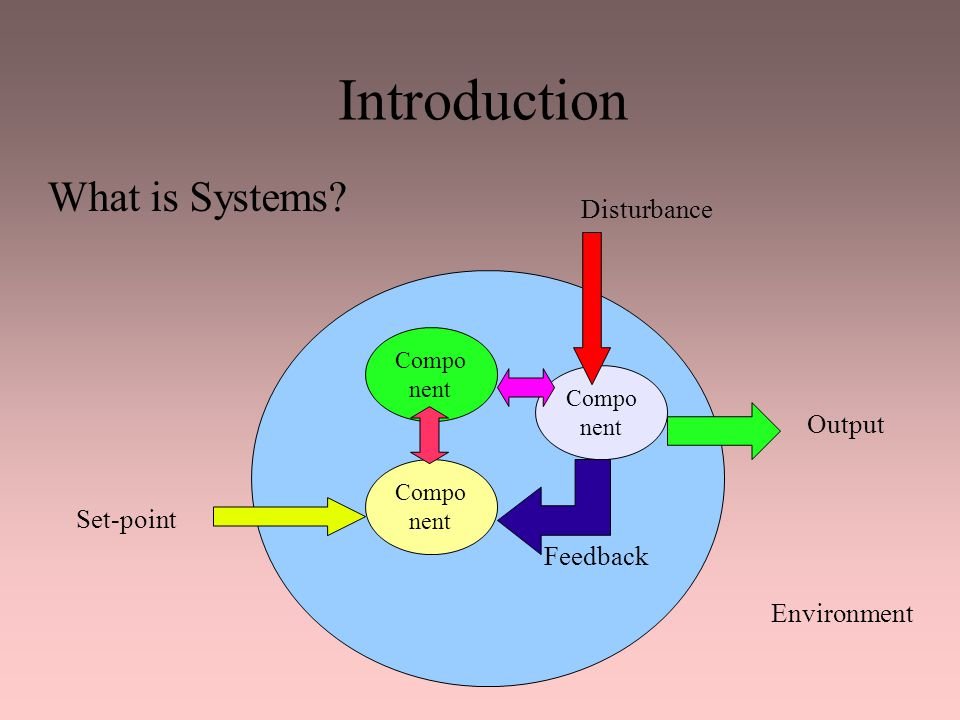 Introduction What is Systems Disturbance Output Set-point Feedback