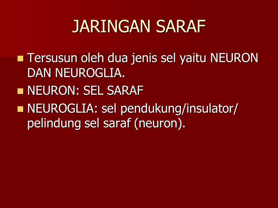 JARINGAN SARAF Tersusun oleh dua jenis sel yaitu NEURON DAN NEUROGLIA.