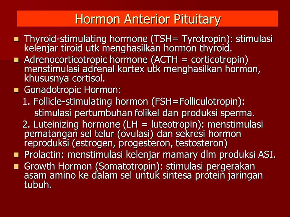 Hormon Anterior Pituitary