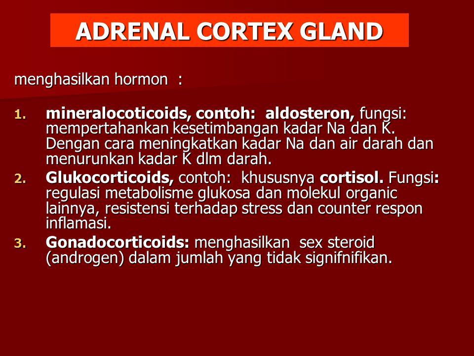 ADRENAL CORTEX GLAND menghasilkan hormon :