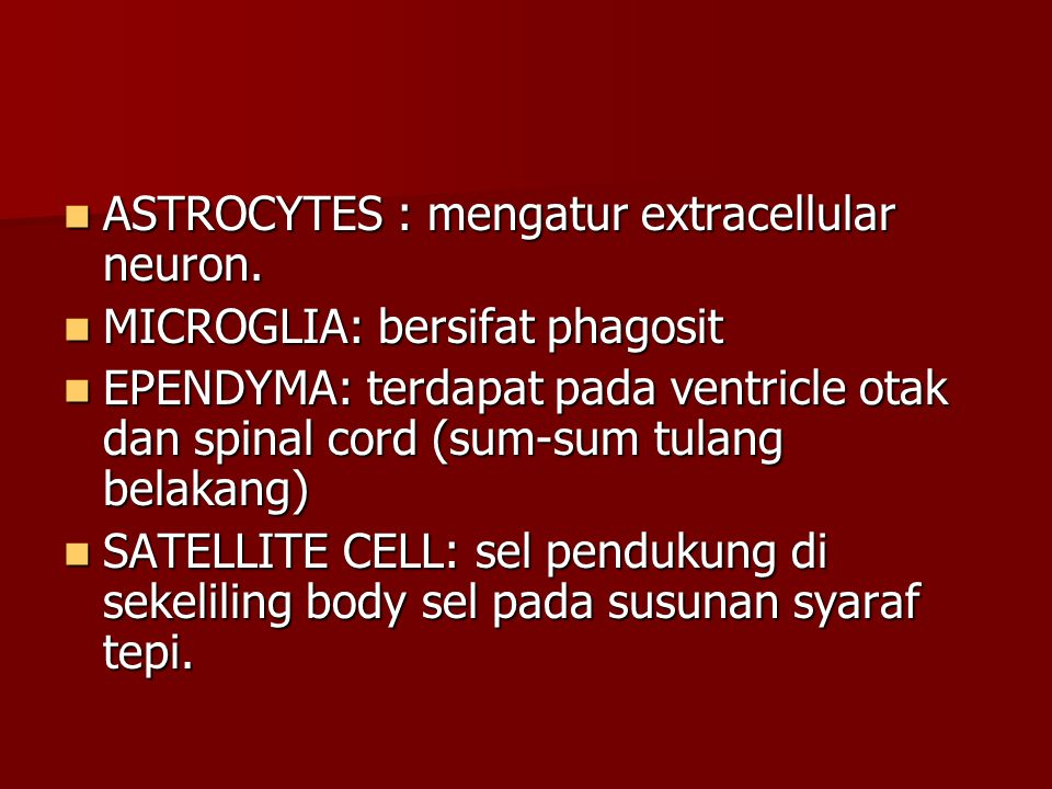ASTROCYTES : mengatur extracellular neuron.