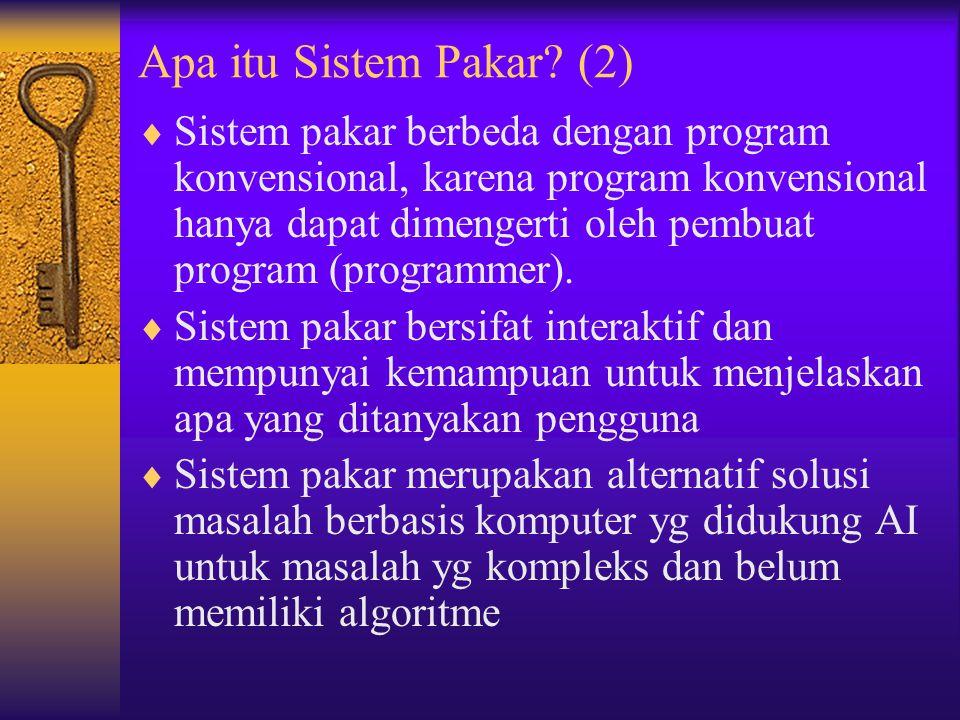 Apa itu Sistem Pakar (2)