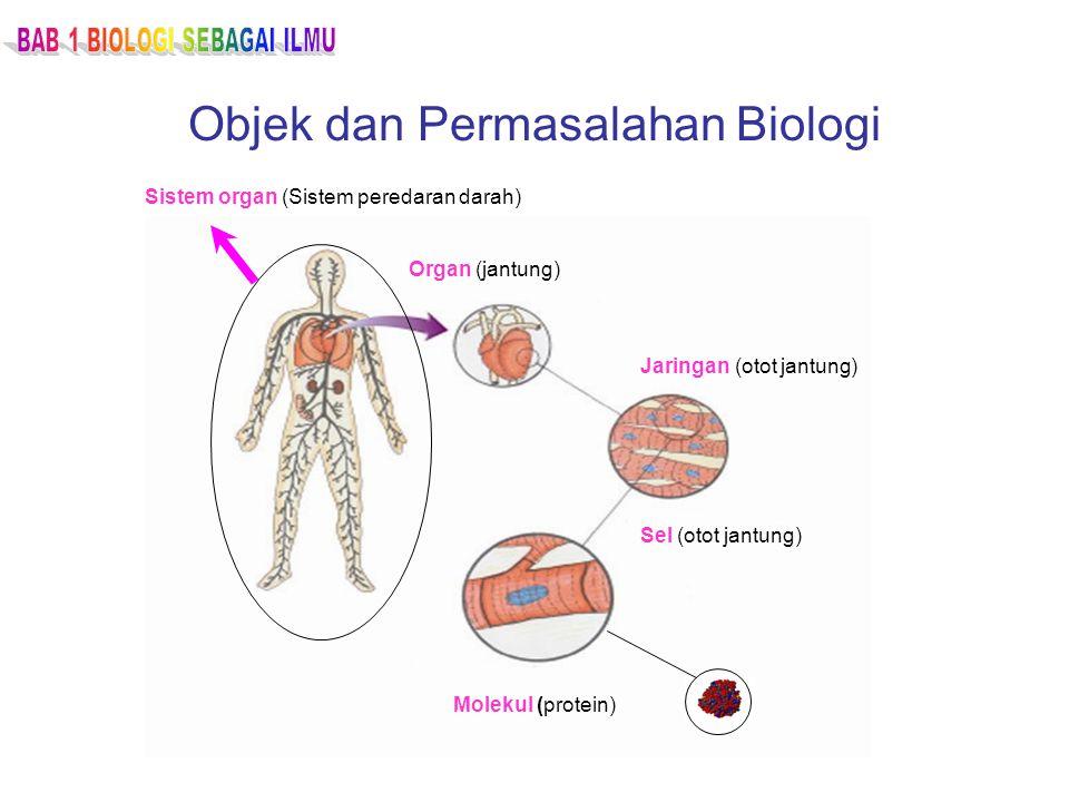 Objek dan Permasalahan Biologi