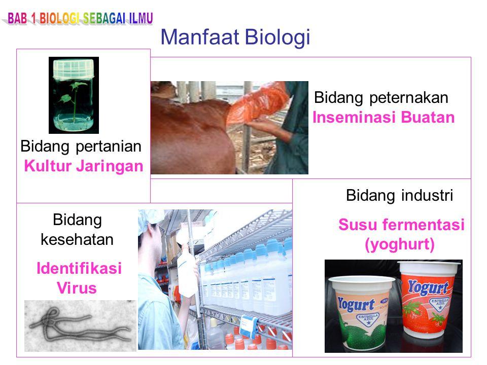 Manfaat Biologi Bidang peternakan Inseminasi Buatan Bidang pertanian