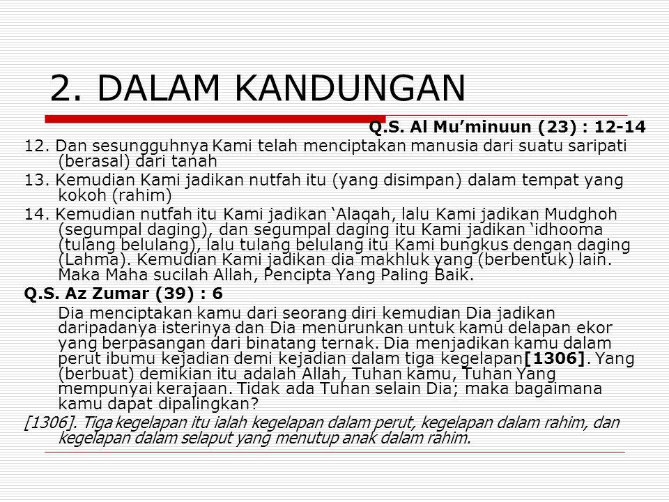 2. DALAM KANDUNGAN Q.S. Al Mu'minuun (23) : 12-14