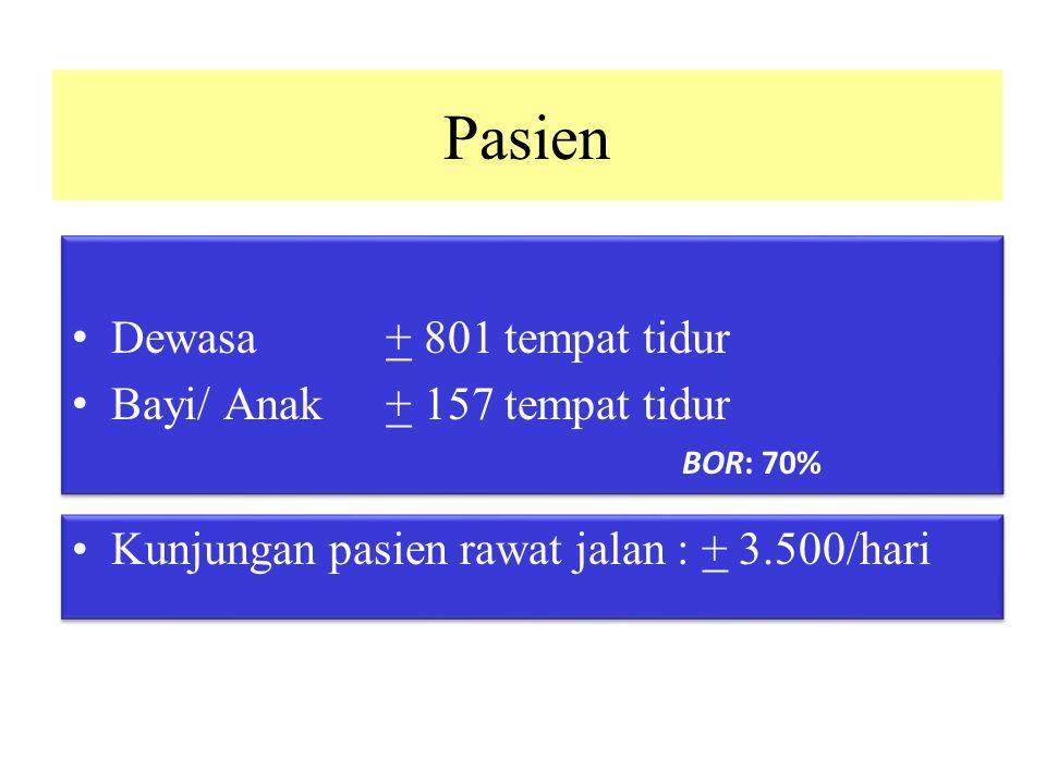 Pasien Dewasa + 801 tempat tidur Bayi/ Anak + 157 tempat tidur