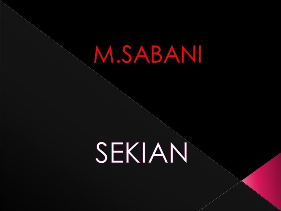 M.SABANI SEKIAN