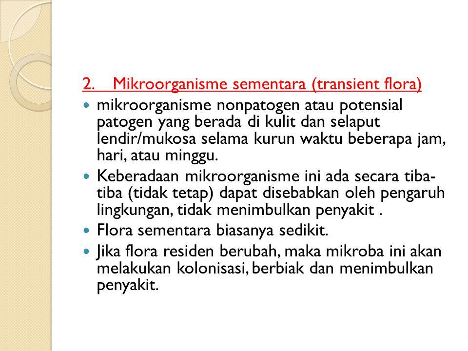 2. Mikroorganisme sementara (transient flora)