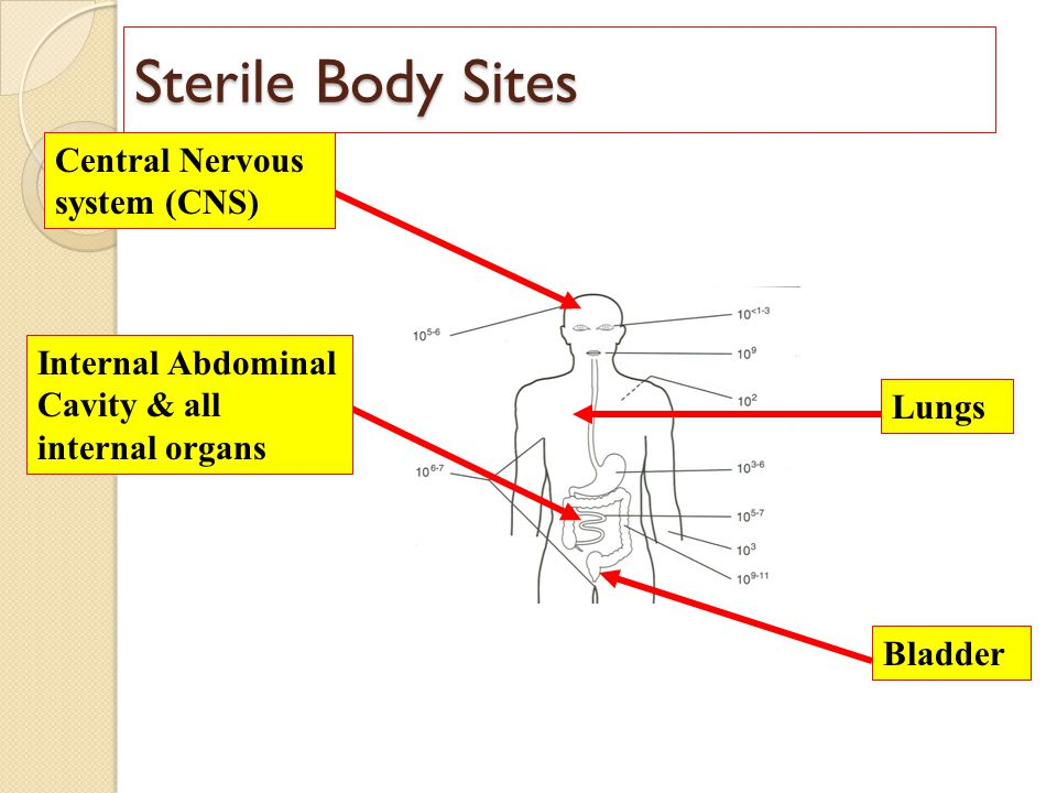 Sterile Body Sites Central Nervous system (CNS)