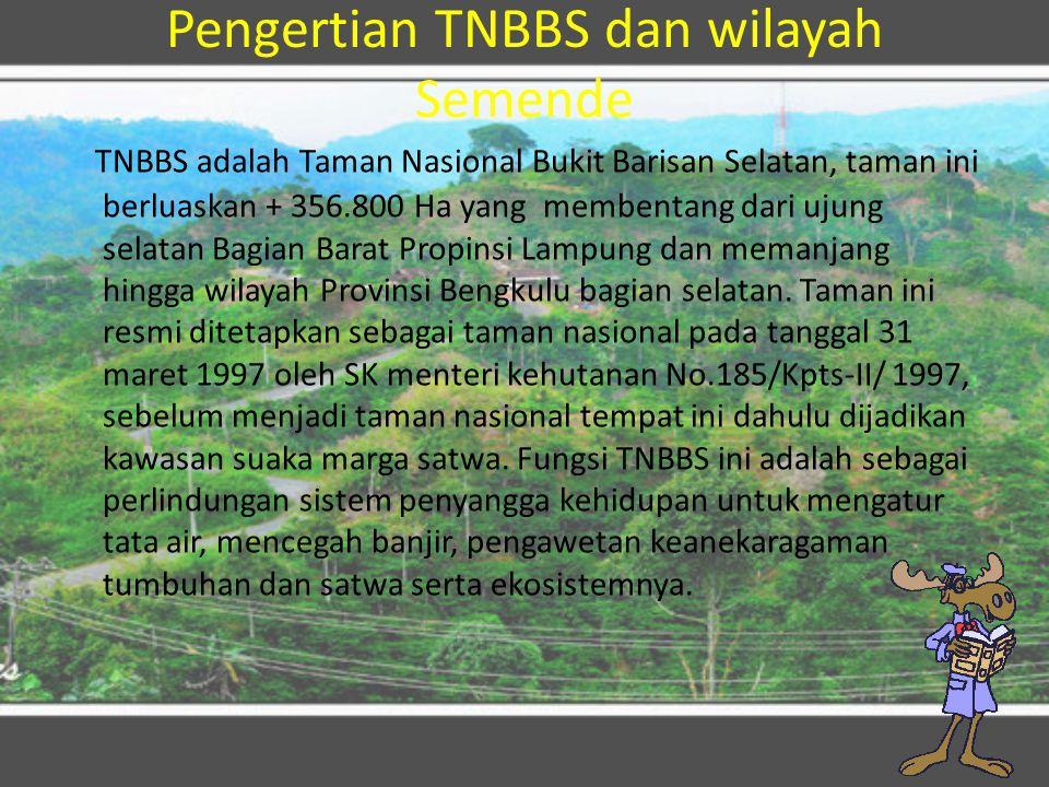 Pengertian TNBBS dan wilayah Semende