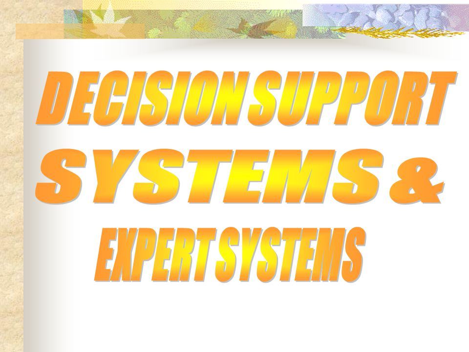 DECISION SUPPORT SYSTEMS & EXPERT SYSTEMS