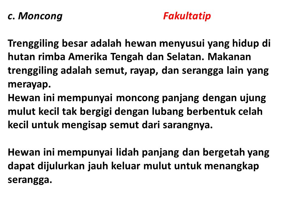 c. Moncong Fakultatip