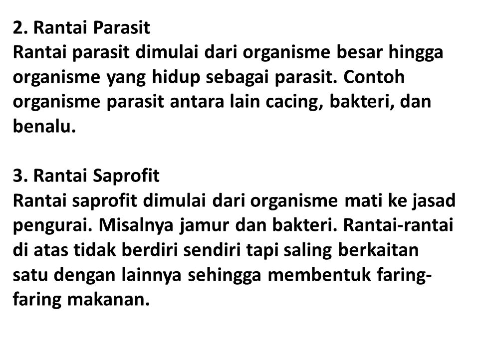 2. Rantai Parasit Rantai parasit dimulai dari organisme besar hingga organisme yang hidup sebagai parasit. Contoh organisme parasit antara lain cacing, bakteri, dan benalu.