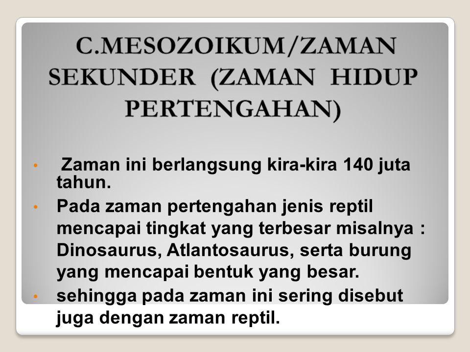 C.MESOZOIKUM/ZAMAN SEKUNDER (ZAMAN HIDUP PERTENGAHAN)