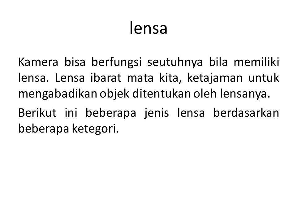 lensa
