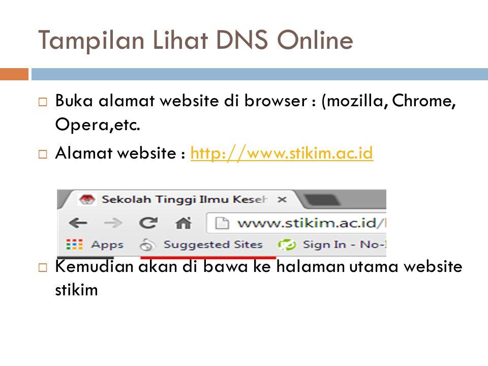 Tampilan Lihat DNS Online