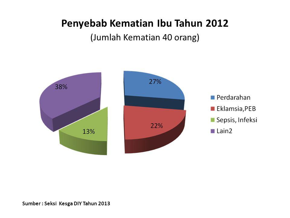Penyebab Kematian Ibu Tahun 2012 (Jumlah Kematian 40 orang)