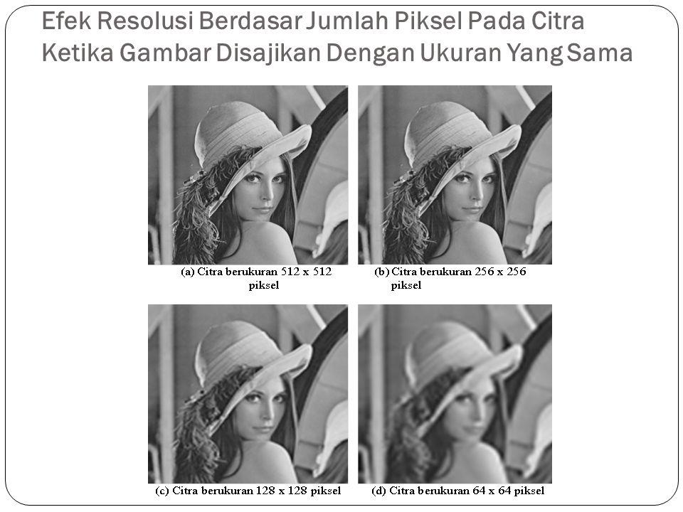 Efek Resolusi Berdasar Jumlah Piksel Pada Citra Ketika Gambar Disajikan Dengan Ukuran Yang Sama