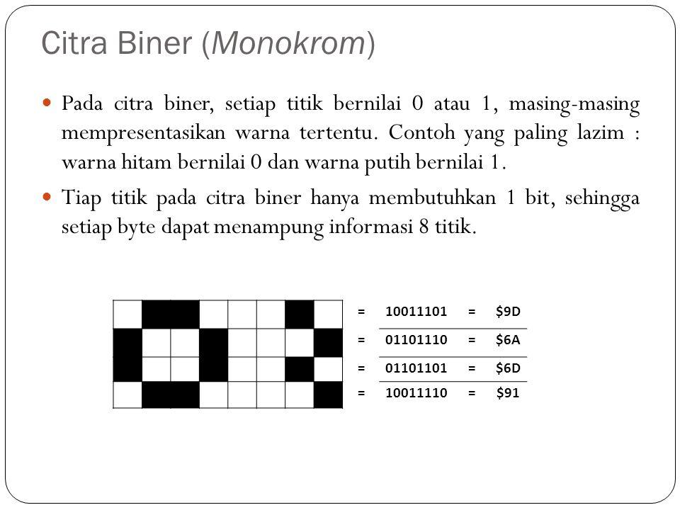 Citra Biner (Monokrom)