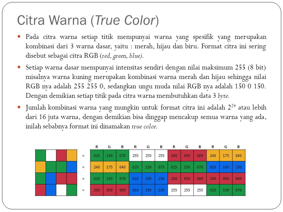Citra Warna (True Color)
