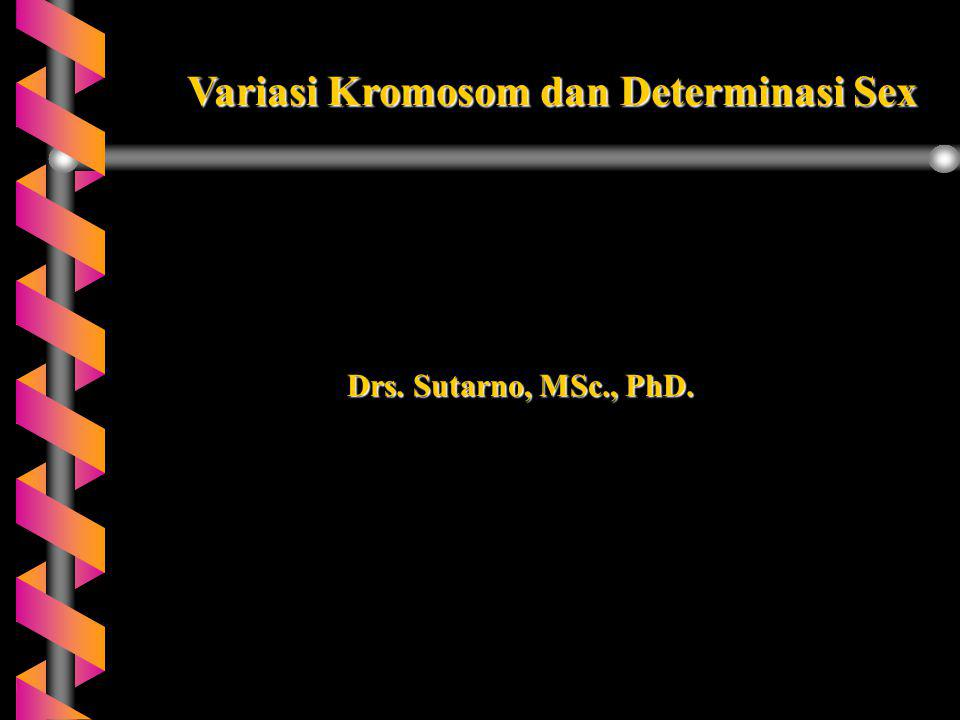 Variasi Kromosom dan Determinasi Sex