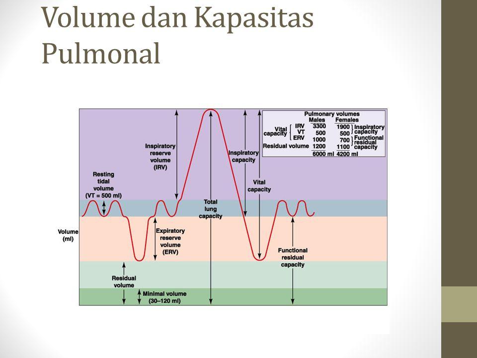 Volume dan Kapasitas Pulmonal
