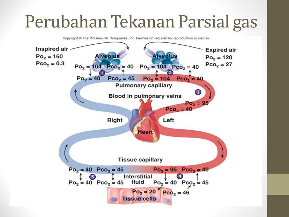 Perubahan Tekanan Parsial gas