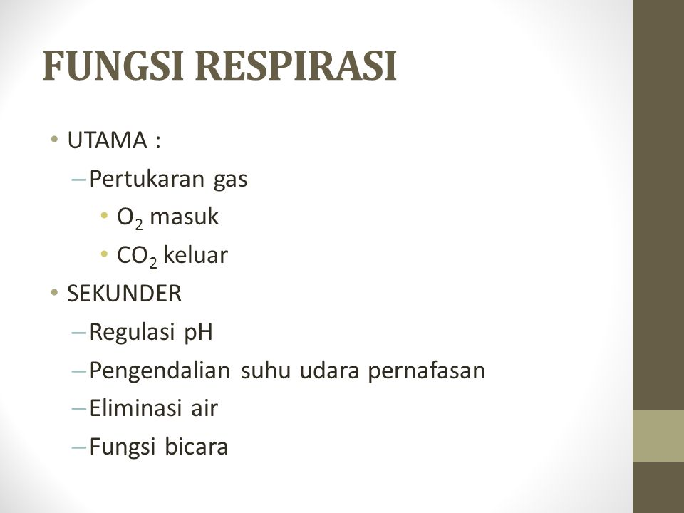 FUNGSI RESPIRASI UTAMA : Pertukaran gas O2 masuk CO2 keluar SEKUNDER