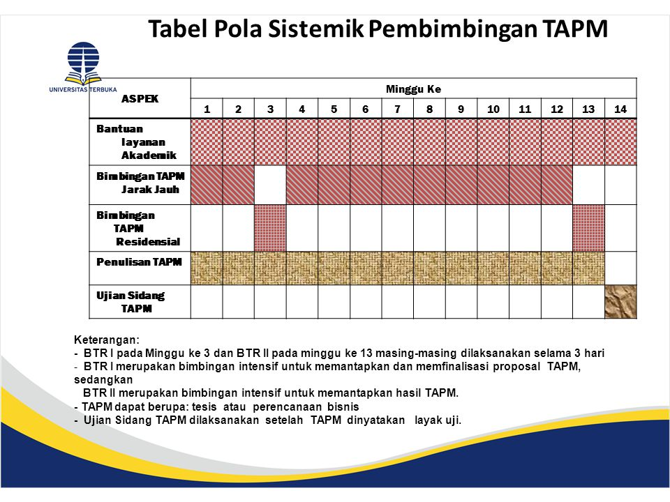 Tabel Pola Sistemik Pembimbingan TAPM
