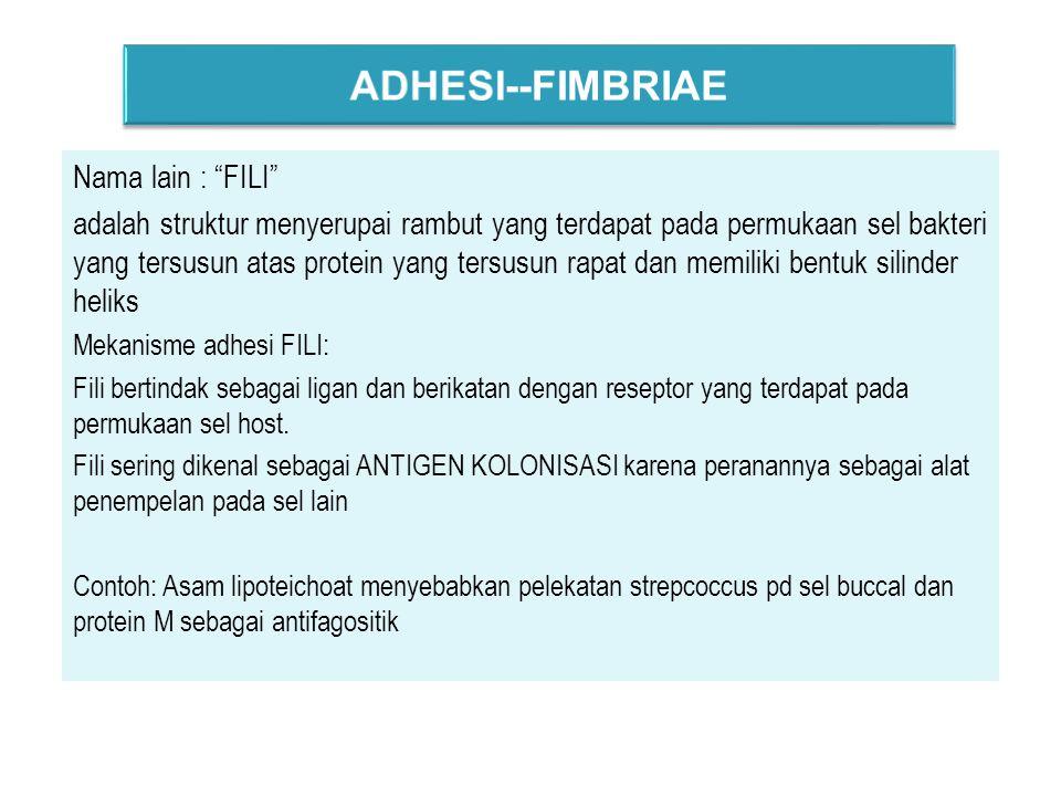 ADHESI--FIMBRIAE Nama lain : FILI