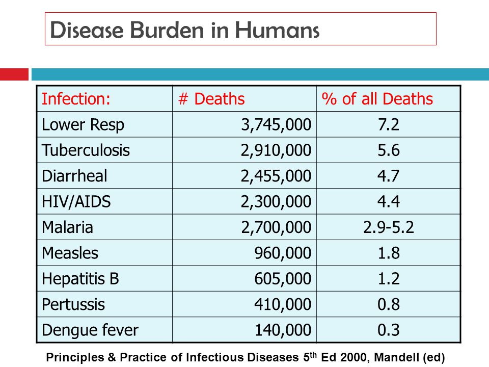 Disease Burden in Humans