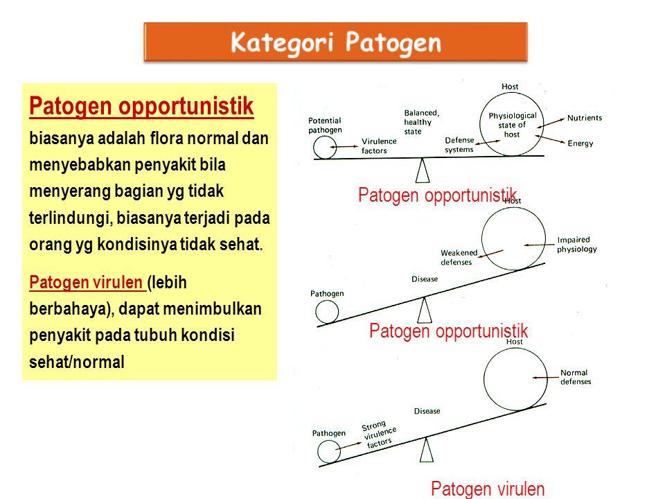 Kategori Patogen