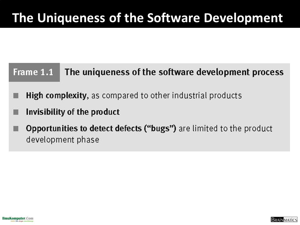 The Uniqueness of the Software Development