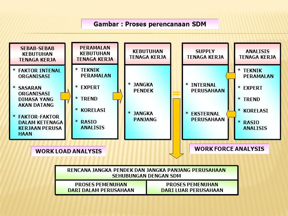 Gambar : Proses perencanaan SDM