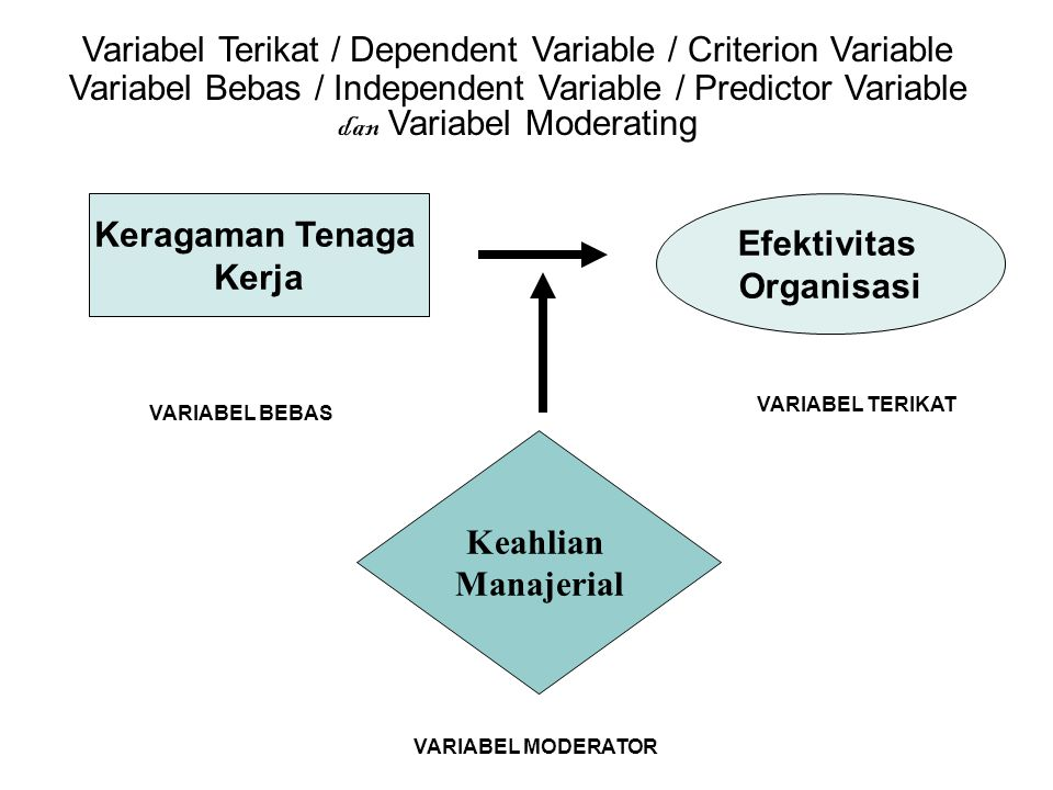 Variabel Terikat / Dependent Variable / Criterion Variable