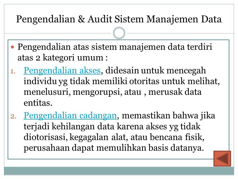 Pengendalian & Audit Sistem Manajemen Data