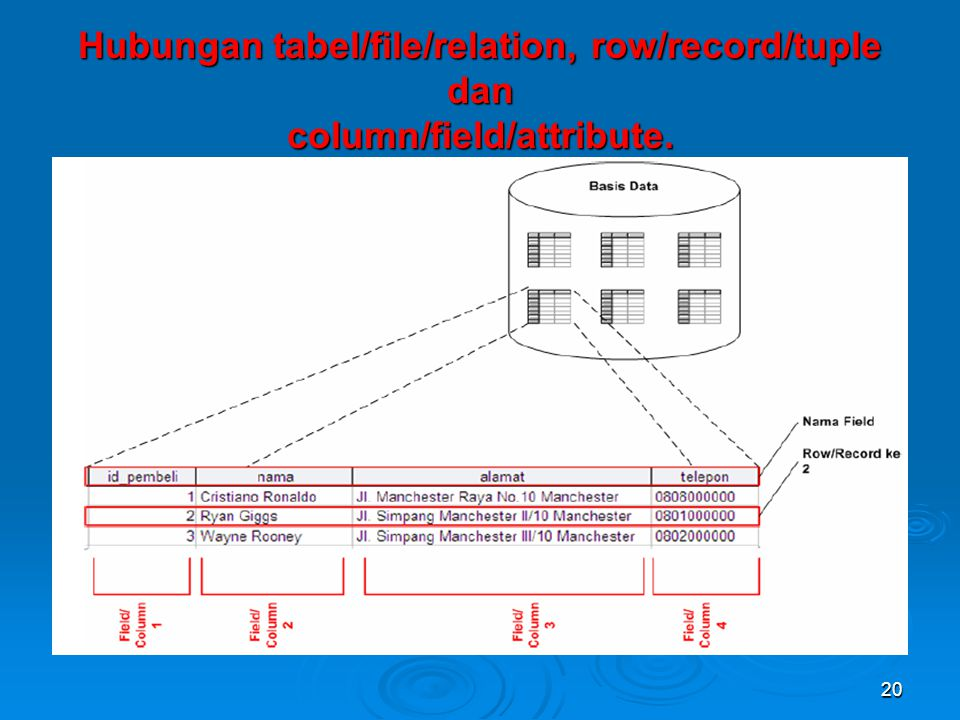 Hubungan tabel/file/relation, row/record/tuple dan column/field/attribute.
