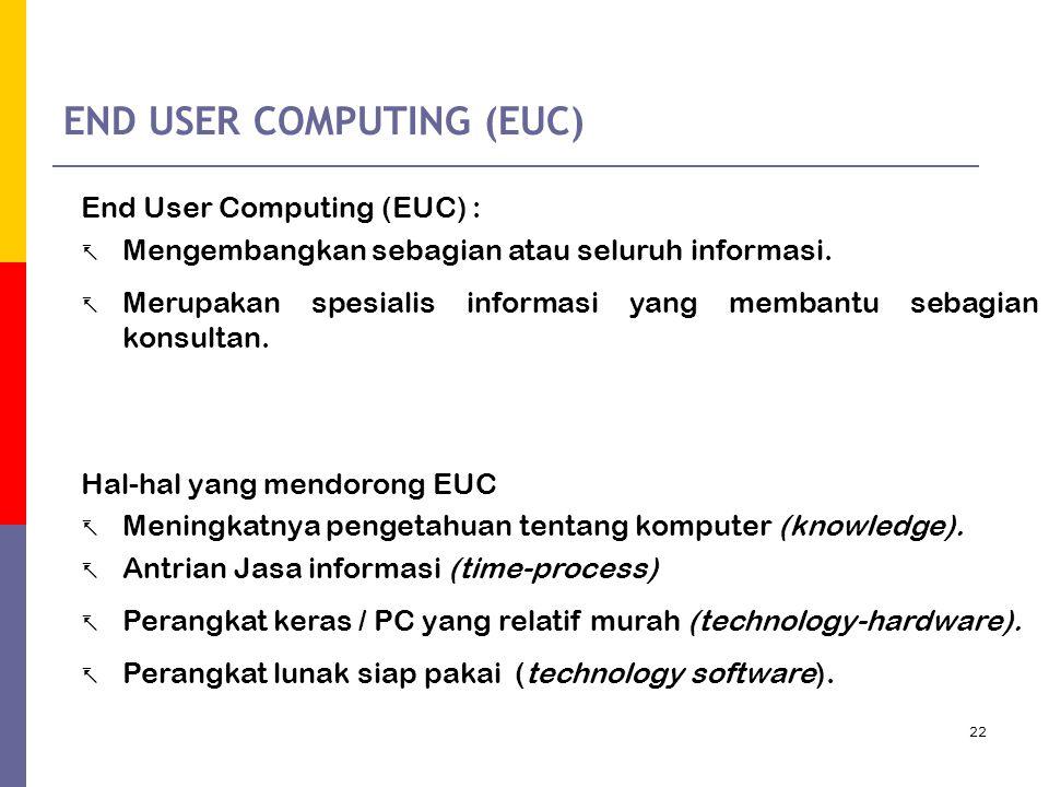 END USER COMPUTING (EUC)