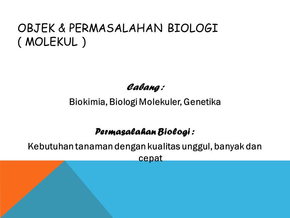 Objek & Permasalahan Biologi ( molekul )