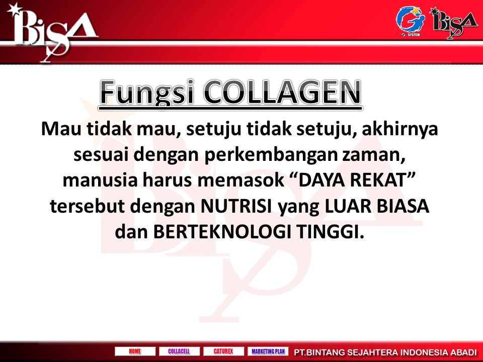 Fungsi COLLAGEN