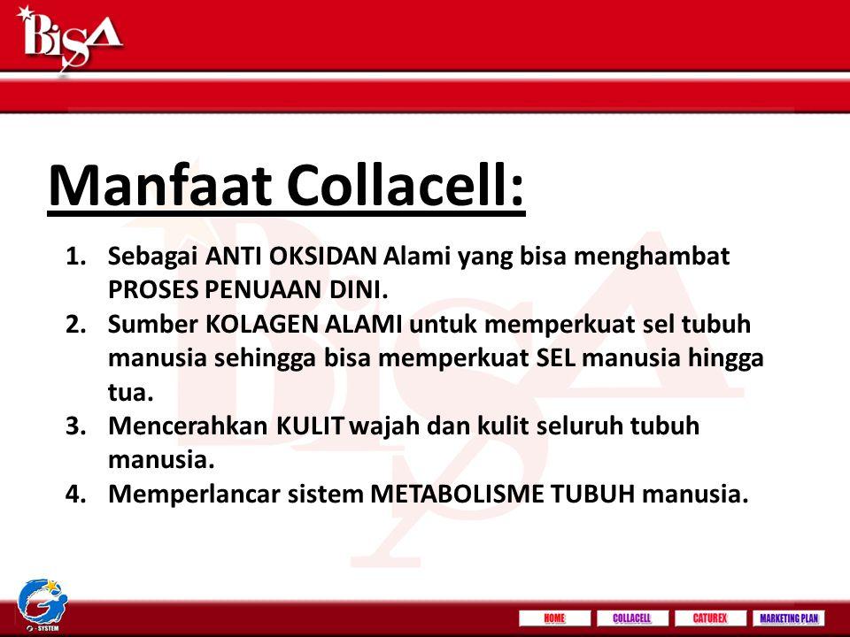 Manfaat Collacell: Sebagai ANTI OKSIDAN Alami yang bisa menghambat PROSES PENUAAN DINI.