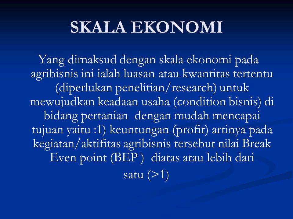 SKALA EKONOMI