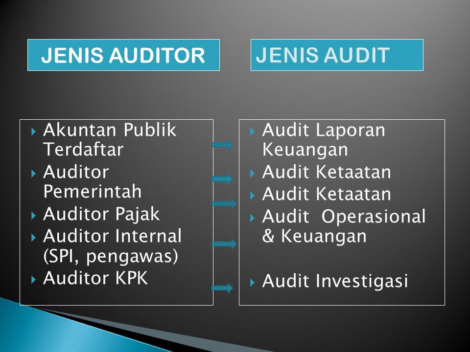 JENIS AUDITOR JENIS AUDIT Akuntan Publik Terdaftar Auditor Pemerintah