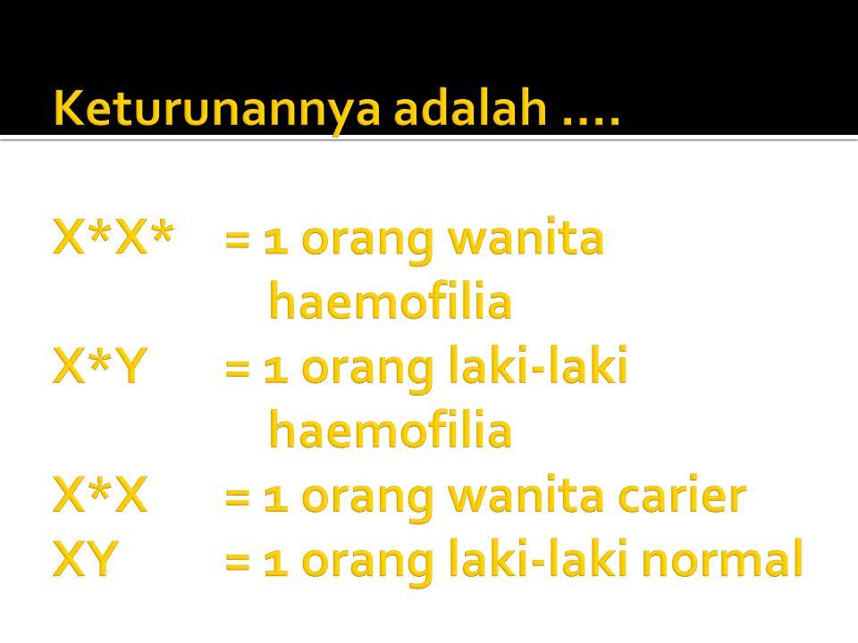 Keturunannya adalah …. X. X. = 1 orang wanita. haemofilia X. Y