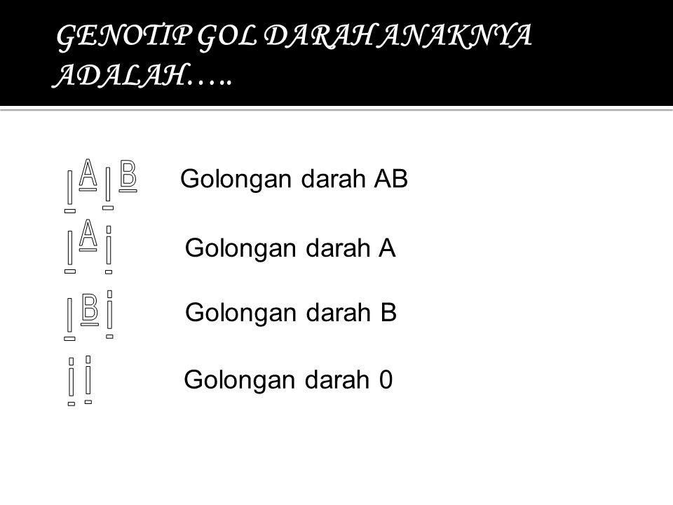 I I I I GENOTIP GOL DARAH ANAKNYA ADALAH….. i i i i Golongan darah AB