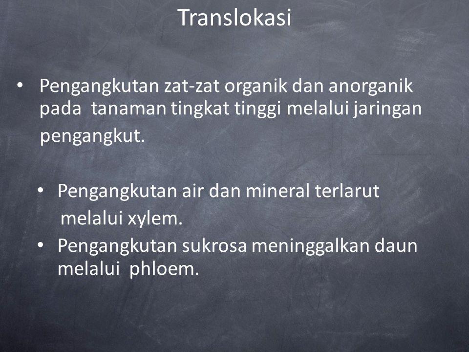 Translokasi Pengangkutan zat-zat organik dan anorganik pada tanaman tingkat tinggi melalui jaringan.
