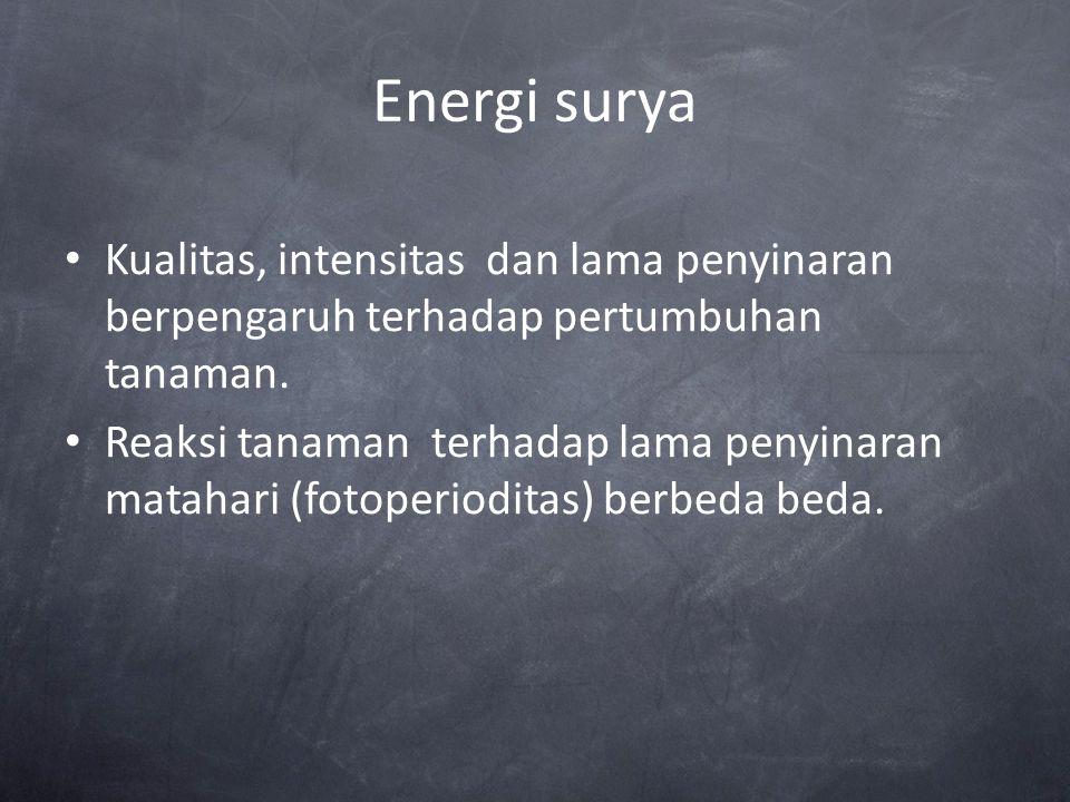Energi surya Kualitas, intensitas dan lama penyinaran berpengaruh terhadap pertumbuhan tanaman.
